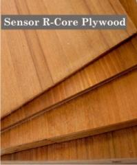 sensor r core plywood