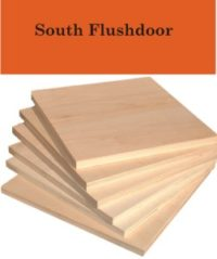 south-floosh-door